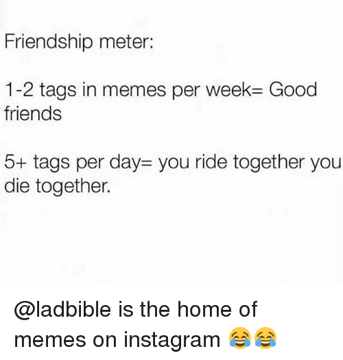 Friends, Instagram, and Memes: Friendship meter:  1-2 tags in memes per week Good  friends  5+ tags per day- you ride together you  die together. @ladbible is the home of memes on instagram 😂😂