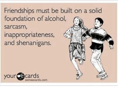Memes, Shenanigans, and Alcohol: Friendships must be built on a solid  foundation of alcohol  sarcasm  inappropnateness,  and shenanigans.  your @ cards  someecards.com