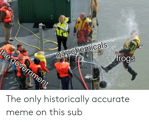 Meme, Dank Memes, and Government: frogs  gay chemicals  the government The only historically accurate meme on this sub