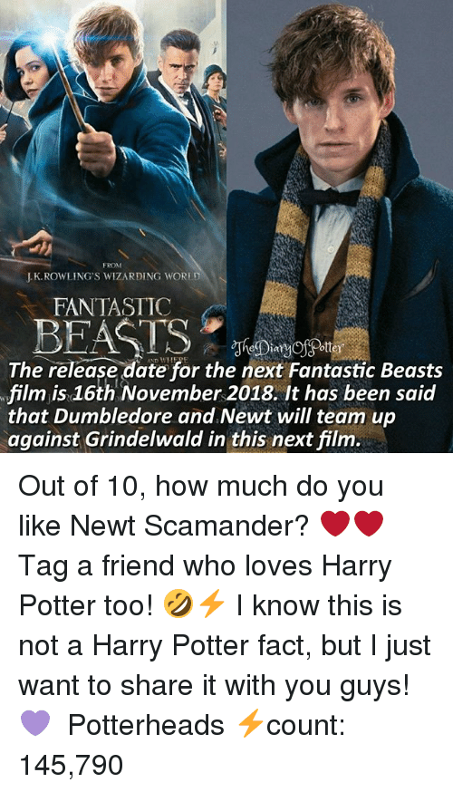 fantastic beasts: FROM  J.K.ROWLING'S WIZARDING WORED  FANTASTIC  The release date for the next Fantastic Beasts  film is 16th November 2018. It has been said  that Dumbledore and.Newt will team up  against Grindelwald in this next film. Out of 10, how much do you like Newt Scamander? ❤❤ ♔ Tag a friend who loves Harry Potter too! 🤣⚡ I know this is not a Harry Potter fact, but I just want to share it with you guys! 💜 ◇ Potterheads⚡count: 145,790