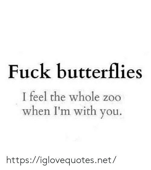 Fuck, Net, and Zoo: Fuck butterflies  I feel the whole zoo  when I'm with you. https://iglovequotes.net/