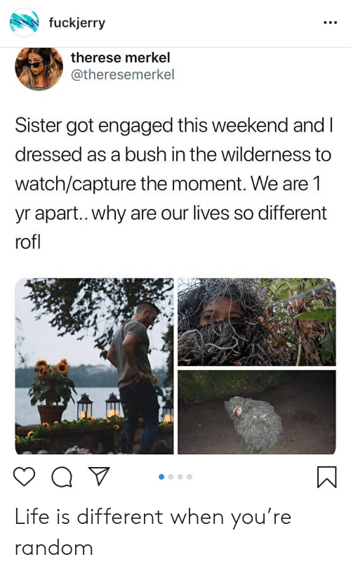 Fuckjerry: fuckjerry  therese merkel  @theresemerkel  Sister got engaged this weekend and I  dressed as a bush in the wilderness to  watch/capture the moment. We are 1  yr apart.. why are our lives so different  rofl Life is different when you're random