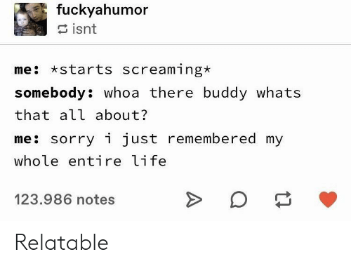 Entire Life: fuckyahumor  isnt  me starts screaming*  somebody: whoa there buddy whats  that all about?  me: sorry i just remembered my  whole entire life  123.986 notes Relatable