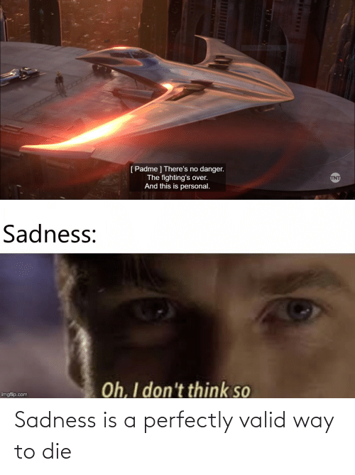 fightings: Full-Screen Snip  [Padme ] There's no danger.  The fighting's over.  And this is personal.  INT  Sadness:  Oh, I don't think so  imgflip.com Sadness is a perfectly valid way to die