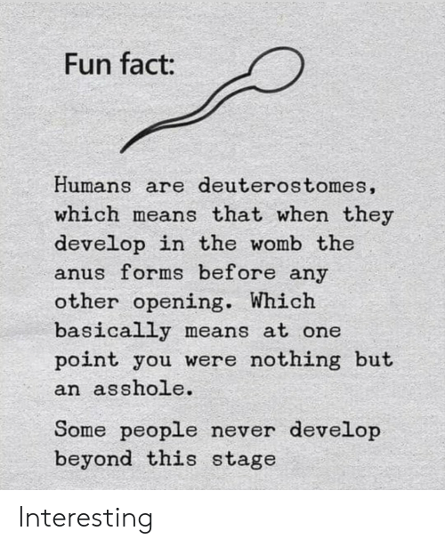 Never, Asshole, and Fun: Fun fact:  Humans are deuterostomes,  which means that when they  develop in the womb the  anus forms before any  other opening. Which  basically means at one  point you were nothing but  an asshole.  Some people never develop  beyond this stage Interesting