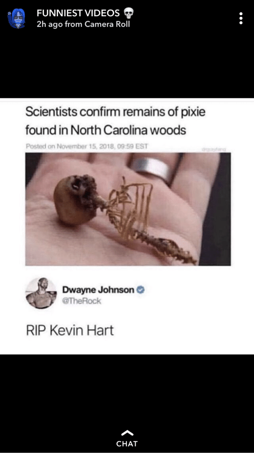 Dwayne Johnson, Kevin Hart, and Videos: FUNNIEST VIDEOS  2h ago from Camera Roll  Scientists confirm remains of pixie  found in North Carolina woods  Posted on November 15, 2018, 09 59 EST  Dwayne Johnson  @TheRock  RIP Kevin Hart  CHAT