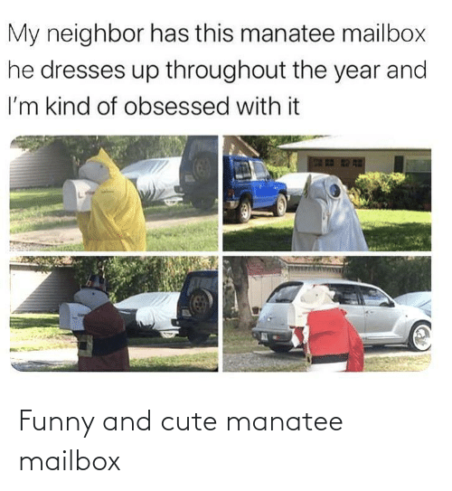 cute: Funny and cute manatee mailbox
