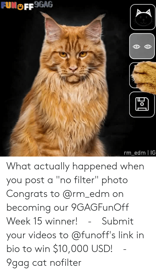 """9gag, Memes, and Videos: FUNOFF 9GAG  0  rm_edm IG What actually happened when you post a """"no filter"""" photo⠀ Congrats to @rm_edm on becoming our 9GAGFunOff Week 15 winner!⠀ -⠀ Submit your videos to @funoff's link in bio to win $10,000 USD!⠀ -⠀ 9gag cat nofilter"""