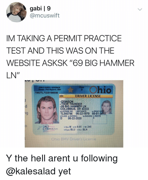 """Memes, Test, and Thor: gabi 