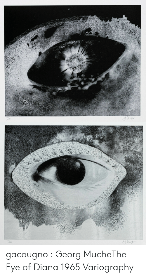 eye: gacougnol: Georg MucheThe Eye of Diana 1965 Variography