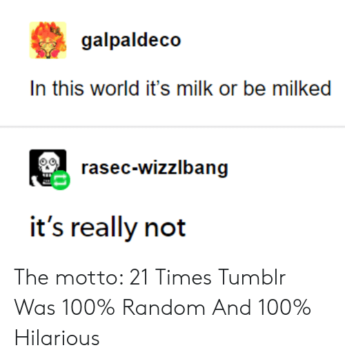motto: galpaldeco  In this world it's milk or be milked  rasec-wizzlbang  it's really not The motto: 21 Times Tumblr Was 100% Random And 100% Hilarious