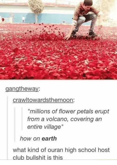 "ouran high school host club: gangtheway:  crawltowardsthemoon:  ""millions of flower petals erupt  from a volcano, covering an  entire village  how on earth  what kind of ouran high school host  club bullshit is this"