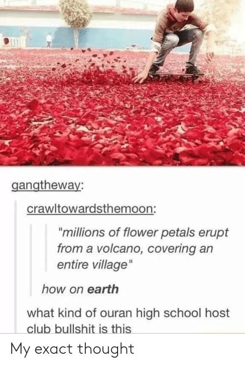 "ouran high school host club: gangtheway:  crawltowardsthemoon:  ""millions of flower petals erupt  from a volcano, covering an  entire village  how on earth  what kind of ouran high school host  club bullshit is this My exact thought"