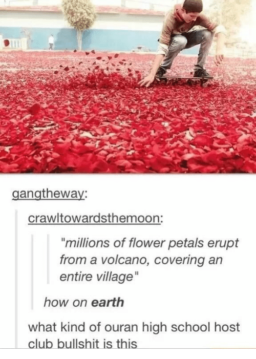 "ouran high school host club: gangtheway:  crawltowardsthemoon:  ""millions of flower petals erupt  from a volcano, covering ar  entire village  how on earth  what kind of ouran high school host  club bullshit is thiS"