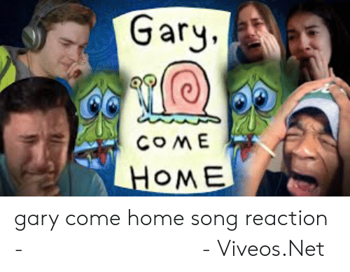Viveos: Gary.  COME  HOME gary come home song reaction - 免费在线视频最佳电影电视节目 - Viveos.Net