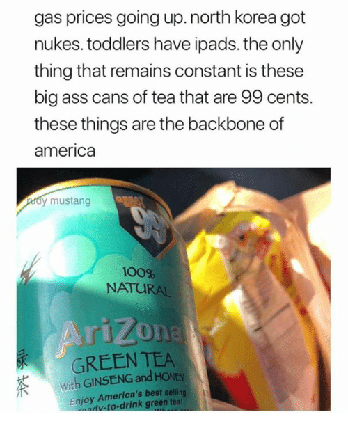 America, Anaconda, and Ass: gas prices going up.north korea got  nukes. toddlers have ipads. the only  thing that remains constant is these  big ass cans of tea that are 99 cents.  these things are the backbone of  america  dy mustang  100%  NATURAL  GREEN TEA  With GINSENG and HONEY  Enjoy America's best selling  adv-to-drink green teal