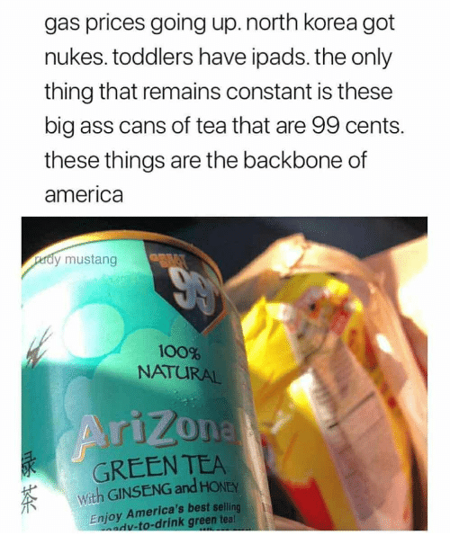 America, Anaconda, and Ass: gas prices going up.north korea got  nukes. toddlers have ipads. the only  thing that remains constant is these  big ass cans of tea that are 99 cents.  these things are the backbone of  america  dy mustang  100%  NATURAL  GREEN TEA  With GINSENG and HONEY  Enjoy America's best selling  dv-to-drink green tea