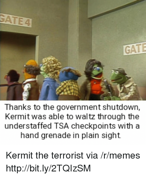 Thanks To The: GATE  Thanks to the government shutdown,  Kermit was able to waltz through the  understaffed TSA checkpoints with a  hand grenade in plain sight Kermit the terrorist via /r/memes http://bit.ly/2TQIzSM