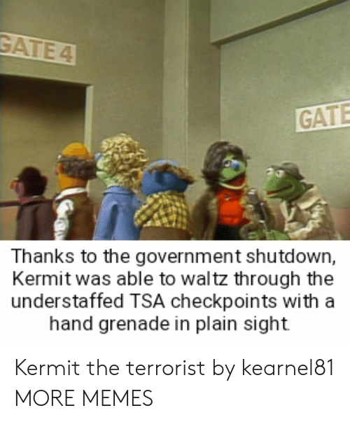 Thanks To The: GATE  Thanks to the government shutdown,  Kermit was able to waltz through the  understaffed TSA checkpoints with a  hand grenade in plain sight Kermit the terrorist by kearnel81 MORE MEMES
