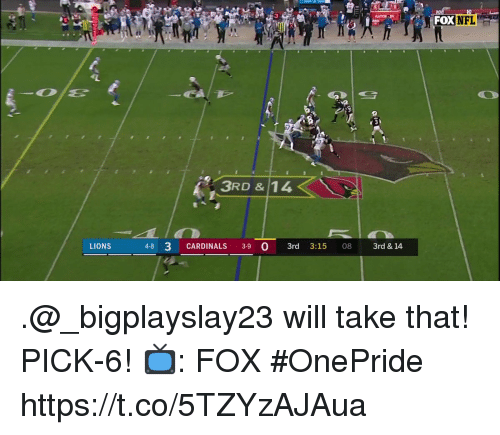 Memes, Cardinals, and Lions: GATOR  FOX  t 3  3RD & 14  LIONS  4-8 3 CARDINALS 3-9 0 3rd 3:15 08 3rd & 14 .@_bigplayslay23 will take that!  PICK-6!  📺: FOX #OnePride https://t.co/5TZYzAJAua