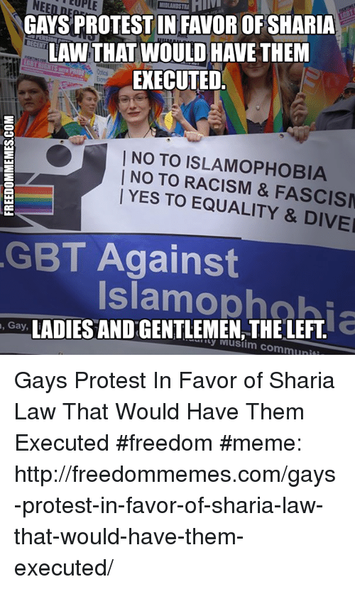 Freedom Meme: GAYS PROTESTIN FAVOR OF SHARIA  LAW THAT WOULD HAVE THEM  EXECUTED  I NO TO NO TO RACISM & FASCISM  YES TO LITY & DIVEI  GBT Against  Gay,  LADIES ANDGENTLEMEN THE LEFT Gays Protest In Favor of Sharia Law That Would Have Them Executed #freedom #meme: http://freedommemes.com/gays-protest-in-favor-of-sharia-law-that-would-have-them-executed/