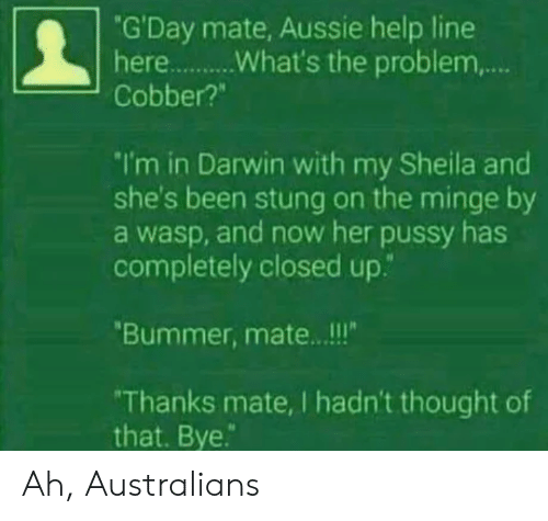"Aussie: ""G'Day mate, Aussie help line  Cobber?""  I'm in Darwin with my Sheila and  she's been stung on the minge by  a wasp, and now her pussy has  completely closed up.""  Bummer, mate.. .!!  Thanks mate, I hadn't thought of  that. Bye. Ah, Australians"