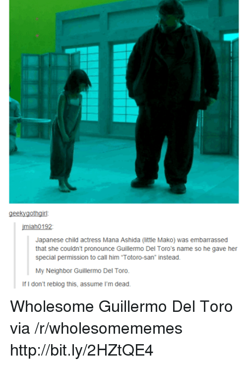 """Http, Japanese, and Wholesome: geekygothgirl  imiah0192  Japanese child actress Mana Ashida (little Mako) was embarrassed  that she couldn't pronounce Guillermo Del Toro's name so he gave her  special permission to call him Totoro-san"""" instead.  My Neighbor Guillermo Del Toro.  If I don't reblog this, assume I'm dead Wholesome Guillermo Del Toro via /r/wholesomememes http://bit.ly/2HZtQE4"""