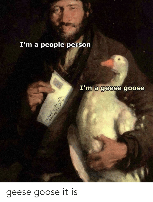goose: geese goose it is