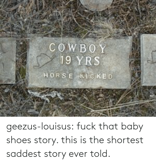 ever: geezus-louisus: fuck that baby shoes story. this is the shortest saddest story ever told.