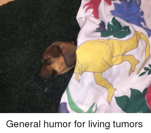 Dank, Generalization, and Living: General humor for living tumors