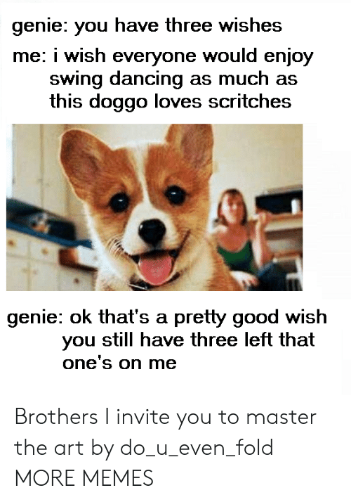 Enjoyment: genie: you have three wishes  me: i wish everyone would enjoy  swing dancing as much as  this doggo loves scritches  genie: ok that's a pretty good wish  you still have three left that  one's on me Brothers I invite you to master the art by do_u_even_fold MORE MEMES