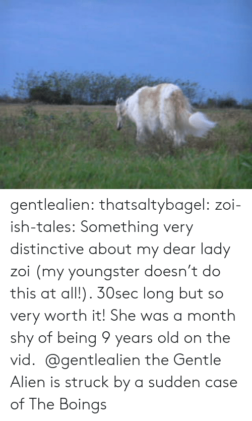 Target, Tumblr, and Alien: gentlealien: thatsaltybagel:  zoi-ish-tales:  Something very distinctive about my dear lady zoi (my youngster doesn't do this at all!). 30sec long but so very worth it! She was a month shy of being 9 years old on the vid.    @gentlealien   the Gentle Alien is struck by a sudden case of The Boings