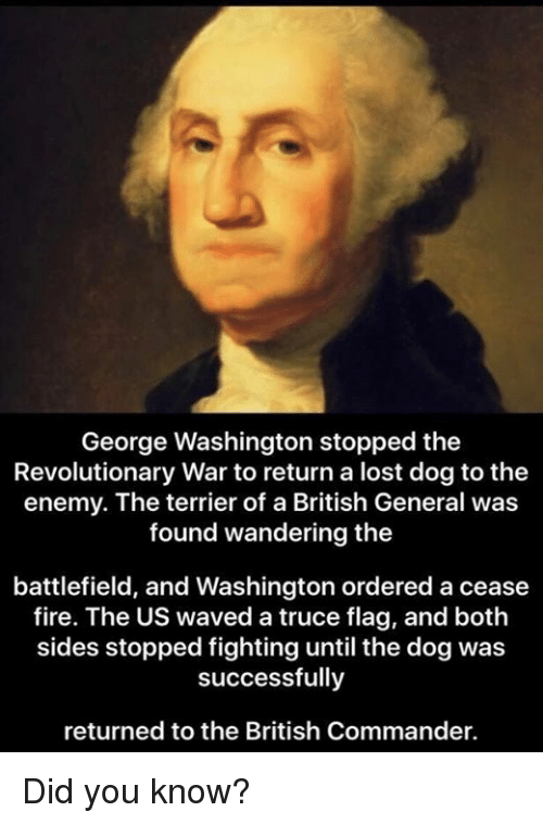 Fire, Memes, and Lost: George Washington stopped the  Revolutionary War to return a lost dog to the  enemy. The terrier of a British General was  found wandering the  battlefield, and Washington ordered a cease  fire. The US waved a truce flag, and both  sides stopped fighting until the dogwas  successfully  returned to the British Commander. Did you know?