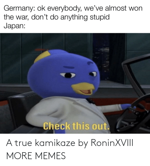 stupid: Germany: ok everybody, we've almost won  the war, don't do anything stupid  Japan:  Check this out. A true kamikaze by RoninXVIII MORE MEMES