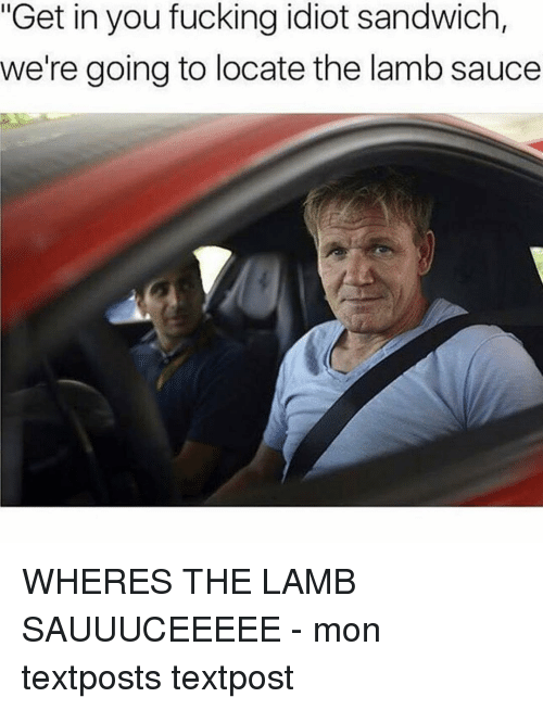 """Idiot Sandwich: """"Get in you fucking idiot sandwich,  we're going to locate the lamb sauce WHERES THE LAMB SAUUUCEEEEE - mon textposts textpost"""