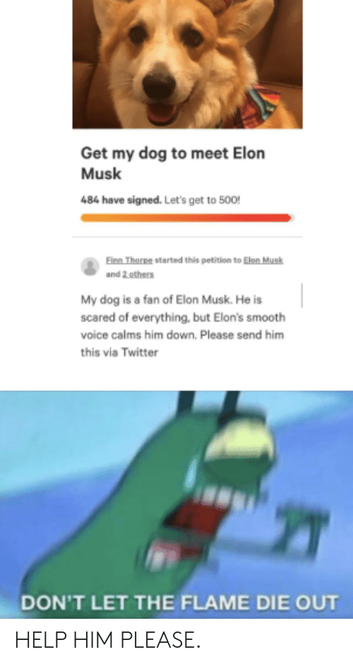 Smooth, Twitter, and Help: Get my dog to meet Elon  Musk  484 have signed. Let's get to 500!  Einn Thorpe started this petition to Elon Musk  and 2 others  My dog is a fan of Elon Musk. He is  scared of everything, but Elon's smooth  voice calms him down. Please send him  this via Twitter  DON'T LET THE FLAME DIE OUT HELP HIM PLEASE.
