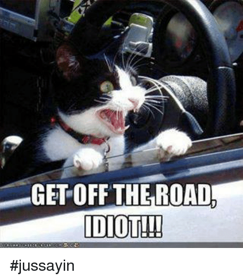 Idioticness: GET OFF THE ROAD  IDIOT!! #jussayin