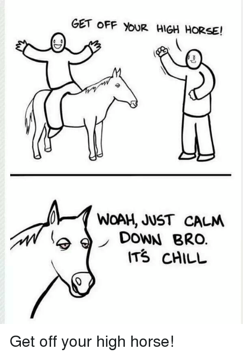 high horse: GET OFF YOUR HIGH HORSE!  WOAH, JUST CALM  DOWN BRO.  ITS CHILL Get off your high horse!
