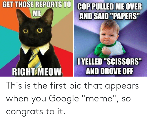 """Google Meme: GET THOSE REPORTS TO COP PULLED ME OVER  ME  AND SAID """"PAPERS  OYELLED """"SCISSORS  AND DROVE OFF  RIGHT MEOW This is the first pic that appears when you Google """"meme"""", so congrats to it."""