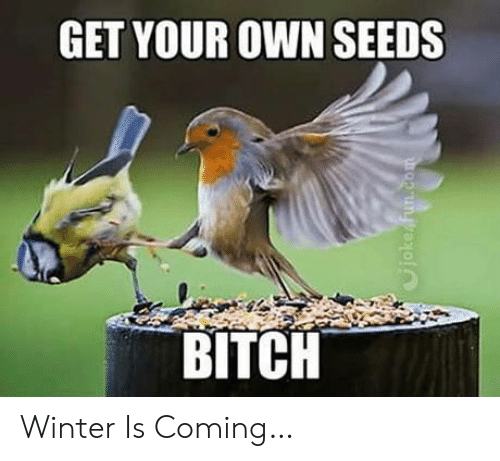 Winter Is: GET YOUR OWN SEEDS  BITCH  Cjoke fun.com Winter Is Coming…