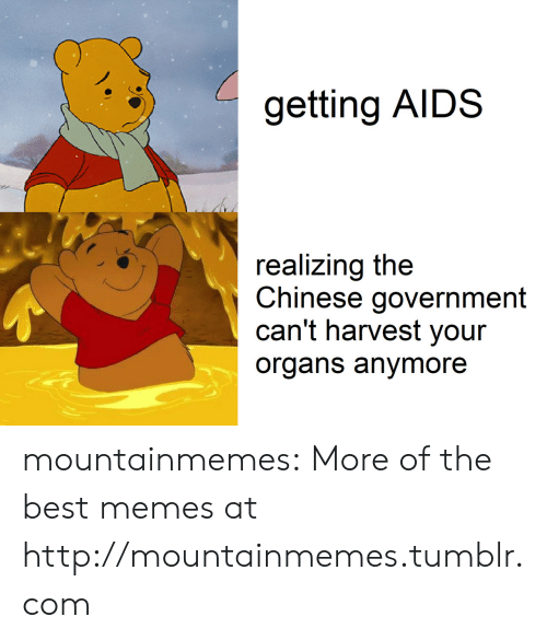 Harvest: getting AIDS  realizing the  Chinese government  can't harvest your  organs anymore mountainmemes:  More of the best memes at http://mountainmemes.tumblr.com