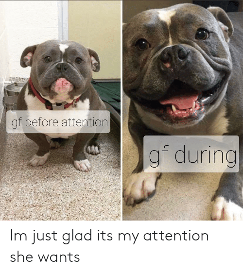 glad: gf before attention  gf during Im just glad its my attention she wants