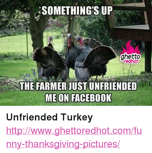 "Facebook, Funny, and Ghetto: ghetto  redhot  THE FARMER JUST UNFRIENDED  MEON FACEBOOK <p><strong>Unfriended Turkey</strong></p><p><a href=""http://www.ghettoredhot.com/funny-thanksgiving-pictures/"">http://www.ghettoredhot.com/funny-thanksgiving-pictures/</a></p>"