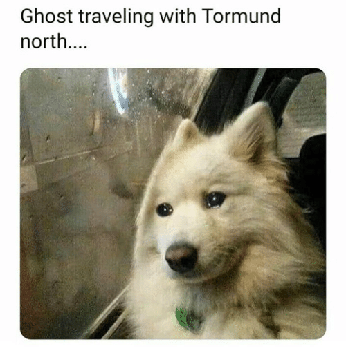 Game of Thrones, Ghost, and Traveling: Ghost traveling with Tormund  north...