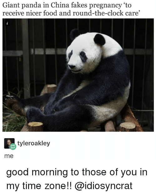 giant panda: Giant panda in China fakes pregnancy 'to  receive nicer food and round-the-clock care  tyleroakley  me good morning to those of you in my time zone!! @idiosyncrat