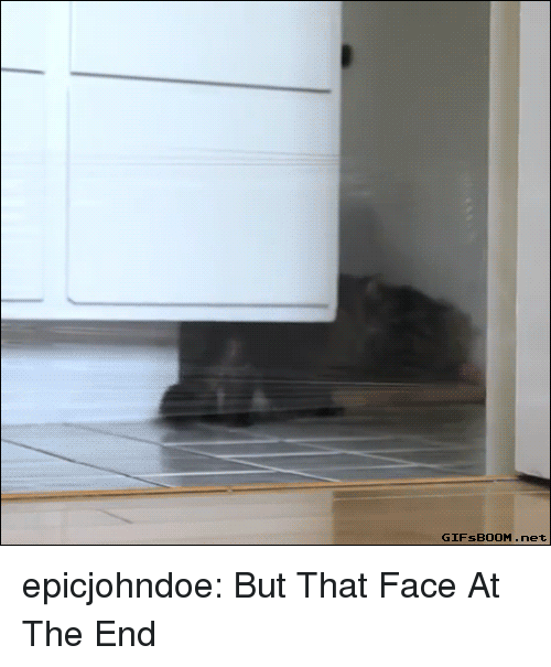 Tumblr, Blog, and Net: GIFsBOOM.net epicjohndoe:  But That Face At The End