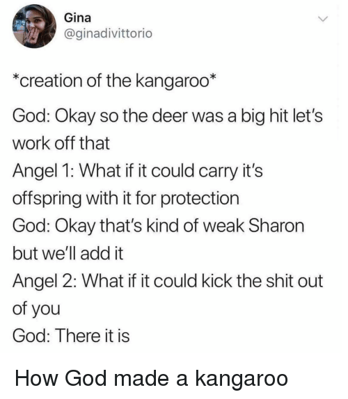 There It Is: Gina  @ginadivittorio  *creation of the kangaroo*  God: Okay so the deer was a big hit let's  work off that  Angel 1: What if it could carry it's  offspring with it for protection  God: Okay that's kind of weak Sharon  but we'll add it  Angel 2: What if it could kick the shit out  of you  God: There it is How God made a kangaroo