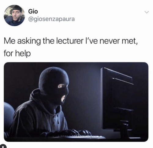 gio: Gio  @giosenzapaura  Me asking the lecturer I've never met,  for help