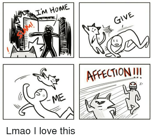 Lmao, Love, and This: GIVE  AFFECTIONII  Dxe Lmao I love this