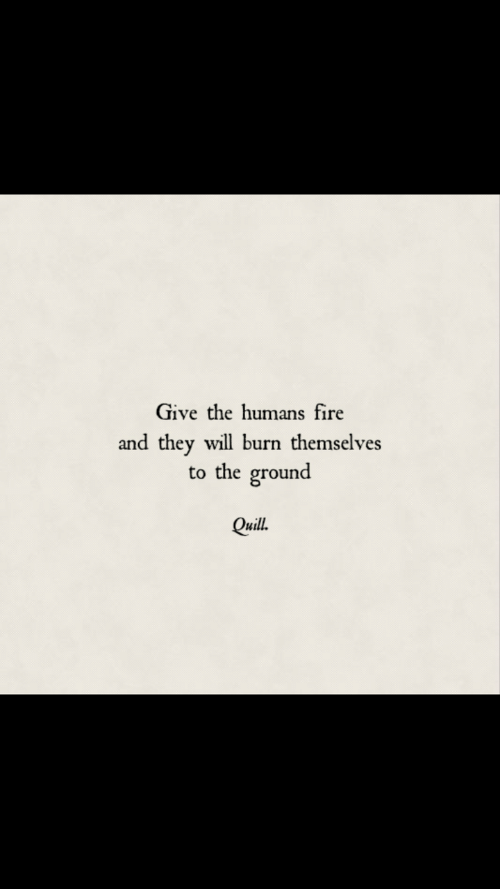 Quill: Give the humans fire  and they will burn themselves  to the ground  Quill.